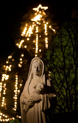 Our Lady @ Night, 2012